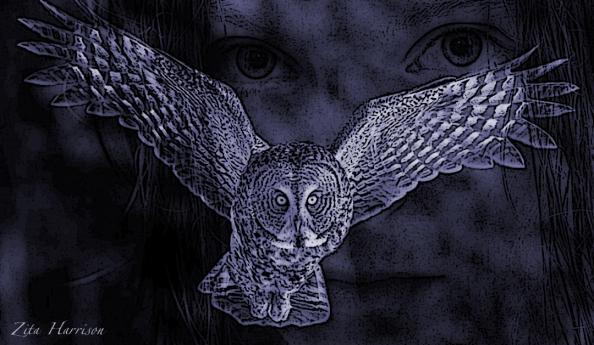 owl ghost blue
