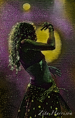 belly dancer final