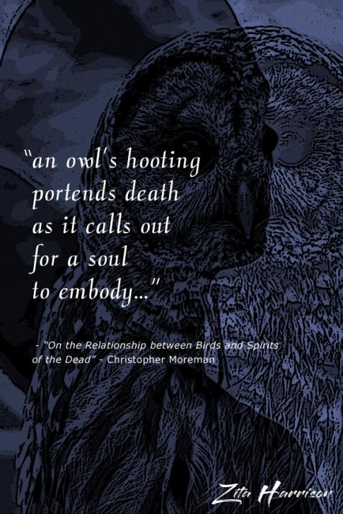 OWLGHOST copy