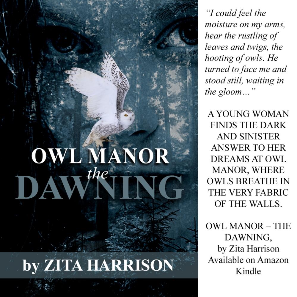 Owl Manor ad 1_28_20 copy